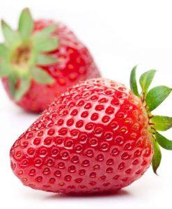fraises de France